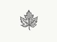 Etch-a-Sketch 6 - Canada Day edition