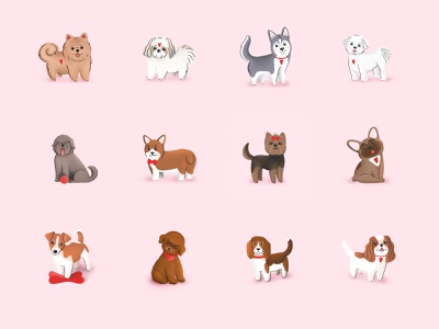 Cute Dogs breeds tezigrooming illustration dogs