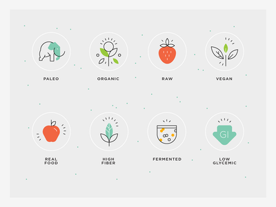 Healthy food values - principles organic food icons low glycemic icon fermented icon high-fiber icon vegan icon raw icon organic icon paleo icon sustainable icons real food icons healthy food icons food icon values