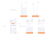 wireframe for consuming calculator concept
