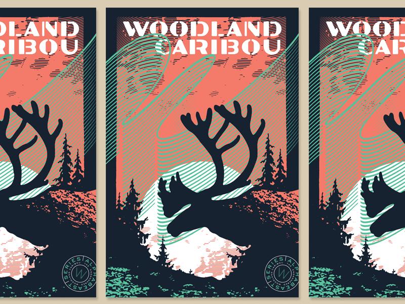 TypeHike | ALPHABEAST poster wpa northern lights caribou hike type typehike alphabeast