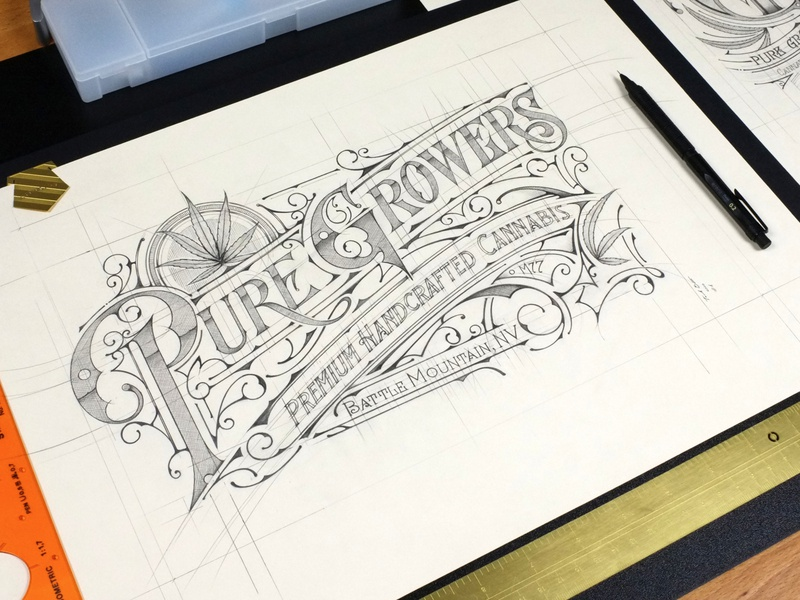 Sketch - Pure Growers   Battle Mountain, Nevada usa details branding szkic sketch pencil handlettering typografia logo typography