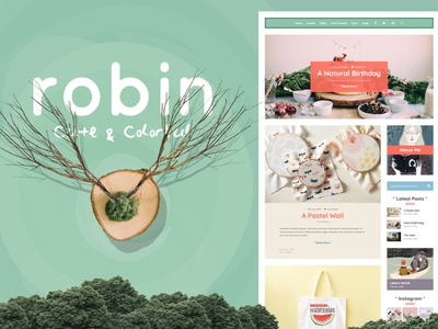 Robin Theme Elements Cover webdesign website wordpress web ux ui template theme design creative journal magazine editorial blogging blog