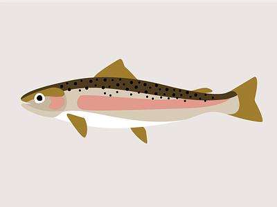Trout Illustration spotted seatrout design digital art illustration fish pastramka trout