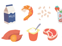 Illustrated food 1
