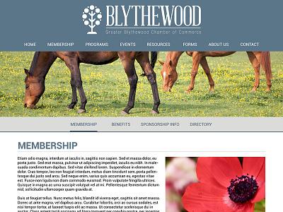Blythewood website chamber of commerce business south carolina