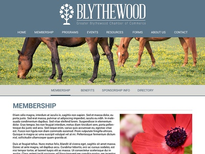 Blythewood website chamber of commerce business south carolina