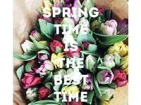Spring is the best