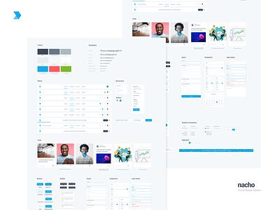 Design Language System - DMI dmi digital marketing institute libraries sketch dashboard web ray doyle typography ux web brand guideline design system design language system ui branding