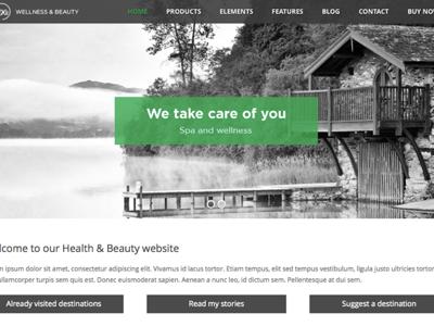 SPA health & beauty WordPress theme wordpress theme page builder business design responsive template website webdesign blog