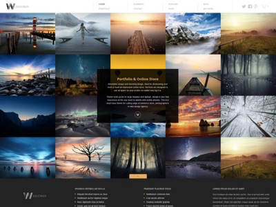 Widescreen - UNIQUE PORTFOLIO & ONLINE STORE wordpress theme page builder business online store design responsive template