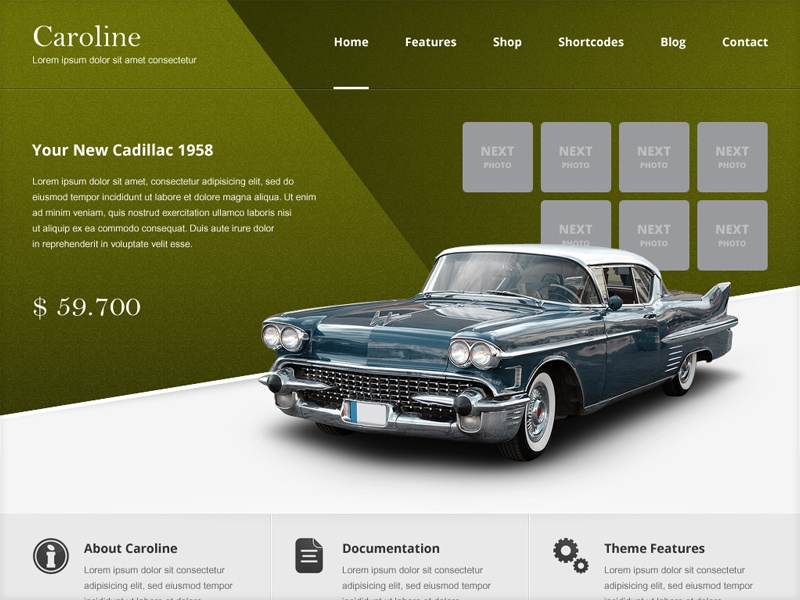 Caroline Free PSD project template free psd web design theme aitthemes