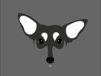 Bandit: A fine mix of husky & terrier.