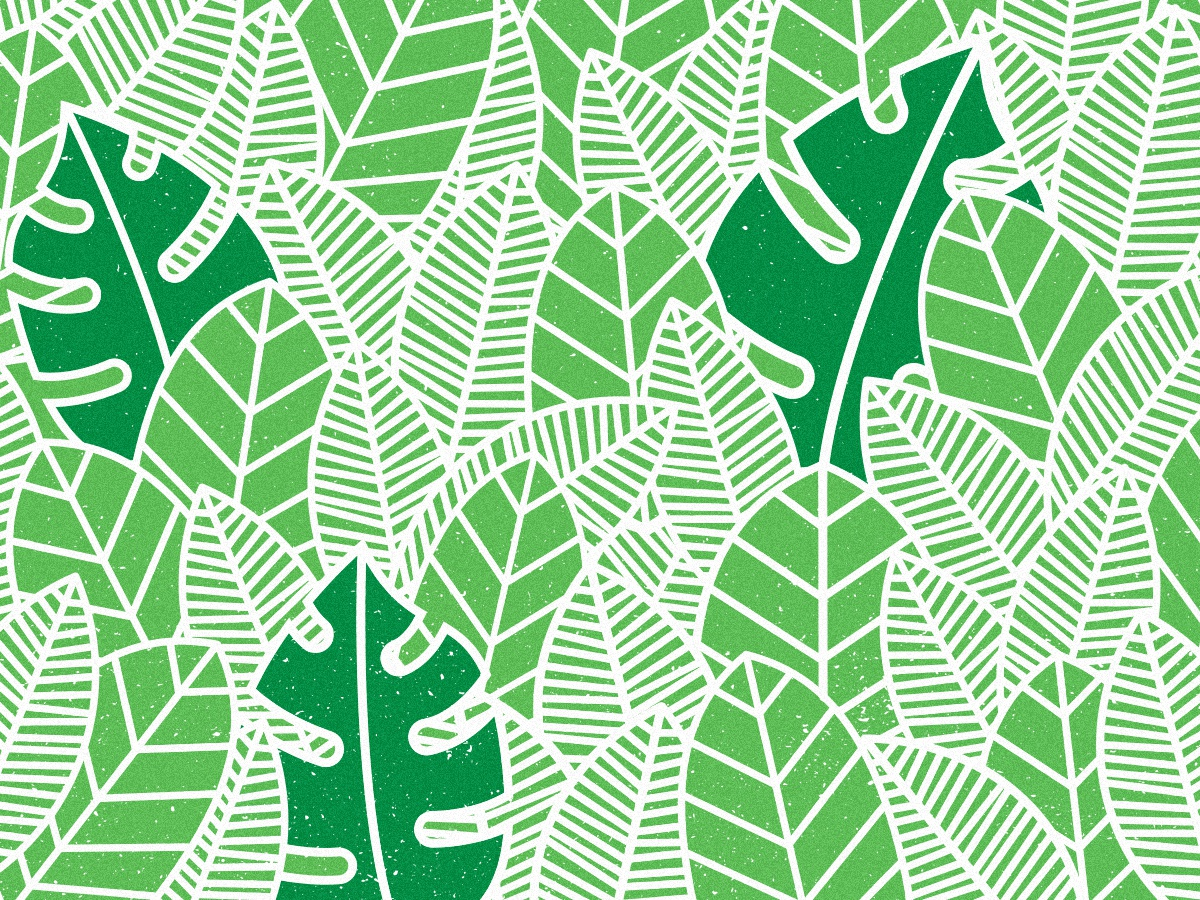 Forest pattern shapes decal lines simple green overlapping deforestation jungle forest leaf leaves pattern design pattern art pattern