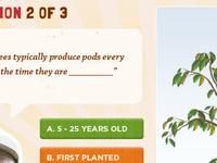 Equal Exchange interactive quiz