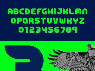 Seahawks Font numbering numbers custom type custom lettering customtype custom lettering type sport sports nike pnw washington football nfl seattle