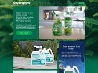 Day05 simple green website concept