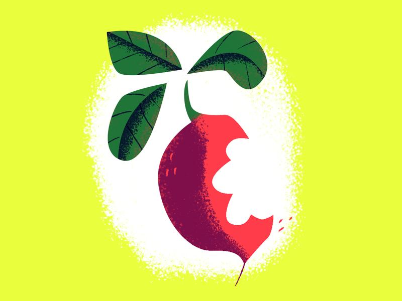 CHOMP. beet radish unsure
