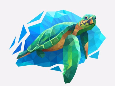 My poly Artbook turtle coloring playgendary illustration vector turtle poly lowpoly