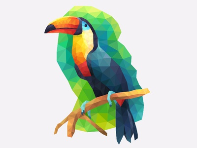 My poly Artbook turtle bird tukan playgendary vector bird illustration poly lowpoly