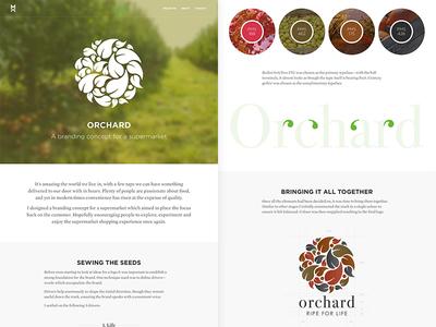 Matt And Design - Orchard case study website portfolio branding project
