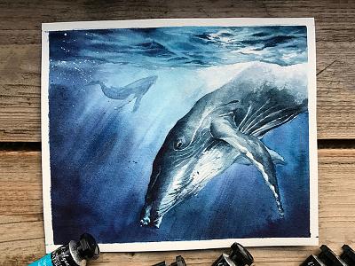 Watercolor Whale hand drawn art whale aquarelle illustration watercolor