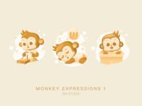 Monkey 11