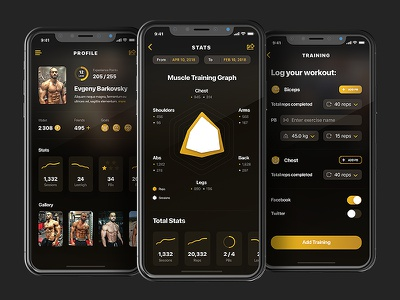Premuim Gainz - Profile & Stats graph stats profile mobile design ui ux workout sport fitness app