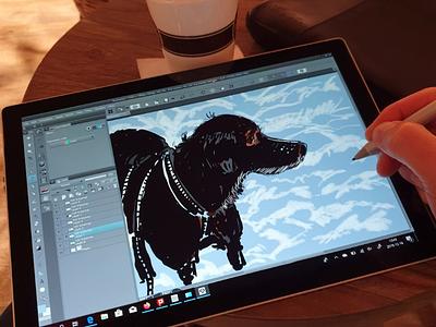 Drawing my dog Miss B illustration drawing sketching