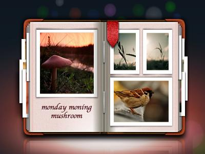 album icon icons pic picture camera album aric china icon aric china