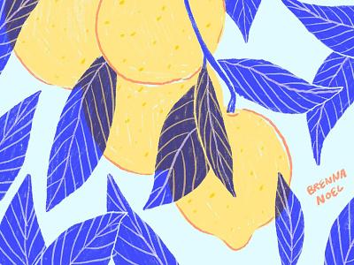 Lemonade ipad pro plant hand drawn design fruit leaves illo botanical citrus lemonade lemons lemon procreate illustration