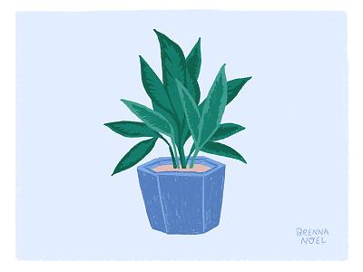 Another Houseplant greenery green plants leaves houseplant plant ipad pro illustrator procreate hand drawn botanical illustration