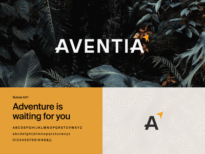 Aventia Adventure Branding indiana jones indiana explore adventure logotype logo design type logo typography design branding