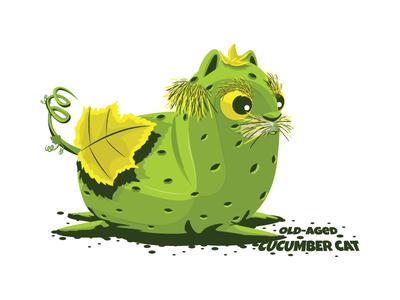 Old-aged cucumber cat