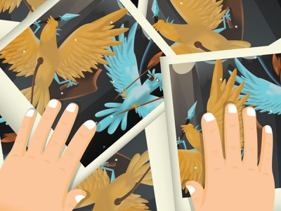 Cuckoo Clock Fights photos birds bird print illustration pic polaroid photos
