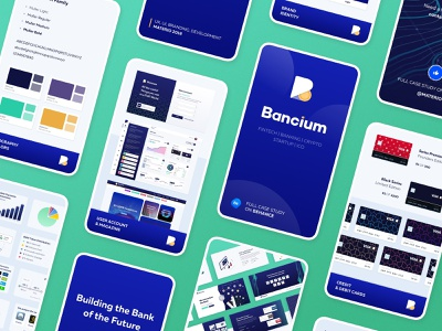 Case Study in Stories platform card bank ico block chain crypto banking fintech instagram ig stories