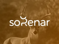 soRenar - Logo Design Exploration