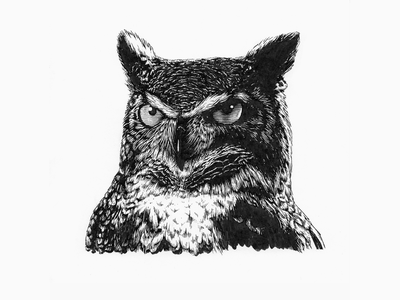 The owls are not what they seem owl ink black and white lineart line art pen and ink