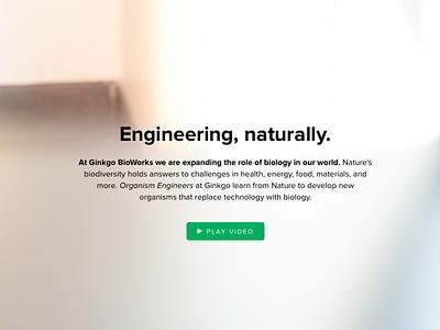 Ginkgo Bioworks identity branding web design video production