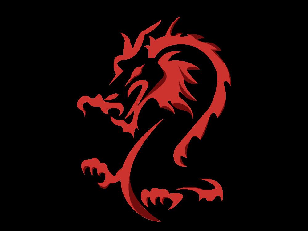 Dragon Talisman draco combustion digital vector illustrator adobe spirit animal china chinese new year chinese zodiac dragonballz dragon icon illustration graphic design
