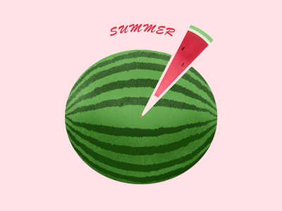 Watermelon ● Summer summer watermelon procreate art procreate illustration design