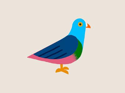 INKTOBER: Day 2 - Pigeon inktober2018 illustration color overlay bird pigeon ink inktober2019 inktober