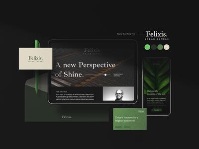 Felixis Solar Panel Branding Guide