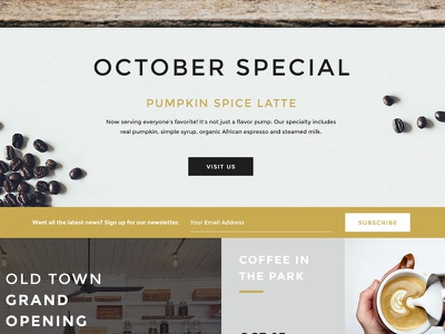 LaunchPad Lab Coffee Roasters interview user interface coffee web design design