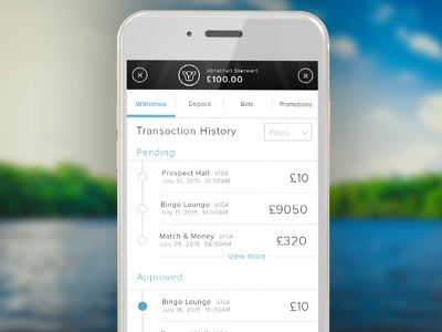Wallet History payment transaction history visual design ui