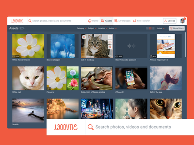 Woovtie digital asset management lightbox gallery dam asset management ui ux dashboard desktop application web app