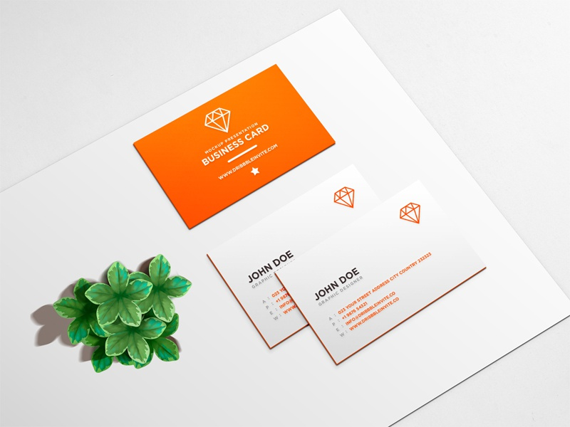 Beautiful Business Card Mockup Psd By Jayden White Dribbble Dribbble