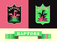 Raptors A.C. Fiction Football