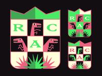 Raptors A.C. Fiction Football 2