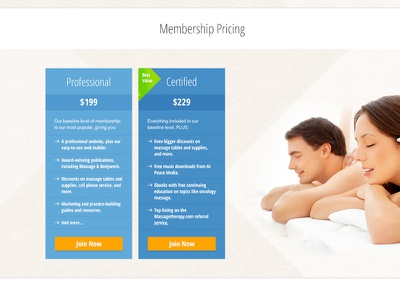 Membership pricing tables (for massage association website) custom design pricing tables membership website association massage